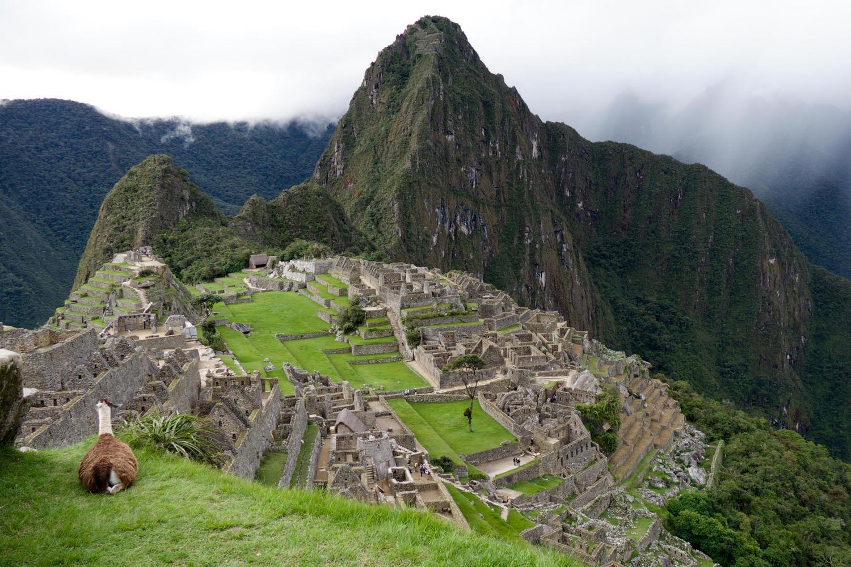 peru-machu-picchu-llama-inca-trail