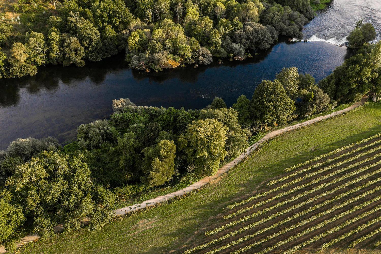 Rivers meet vineyards at Quinta do Ameal