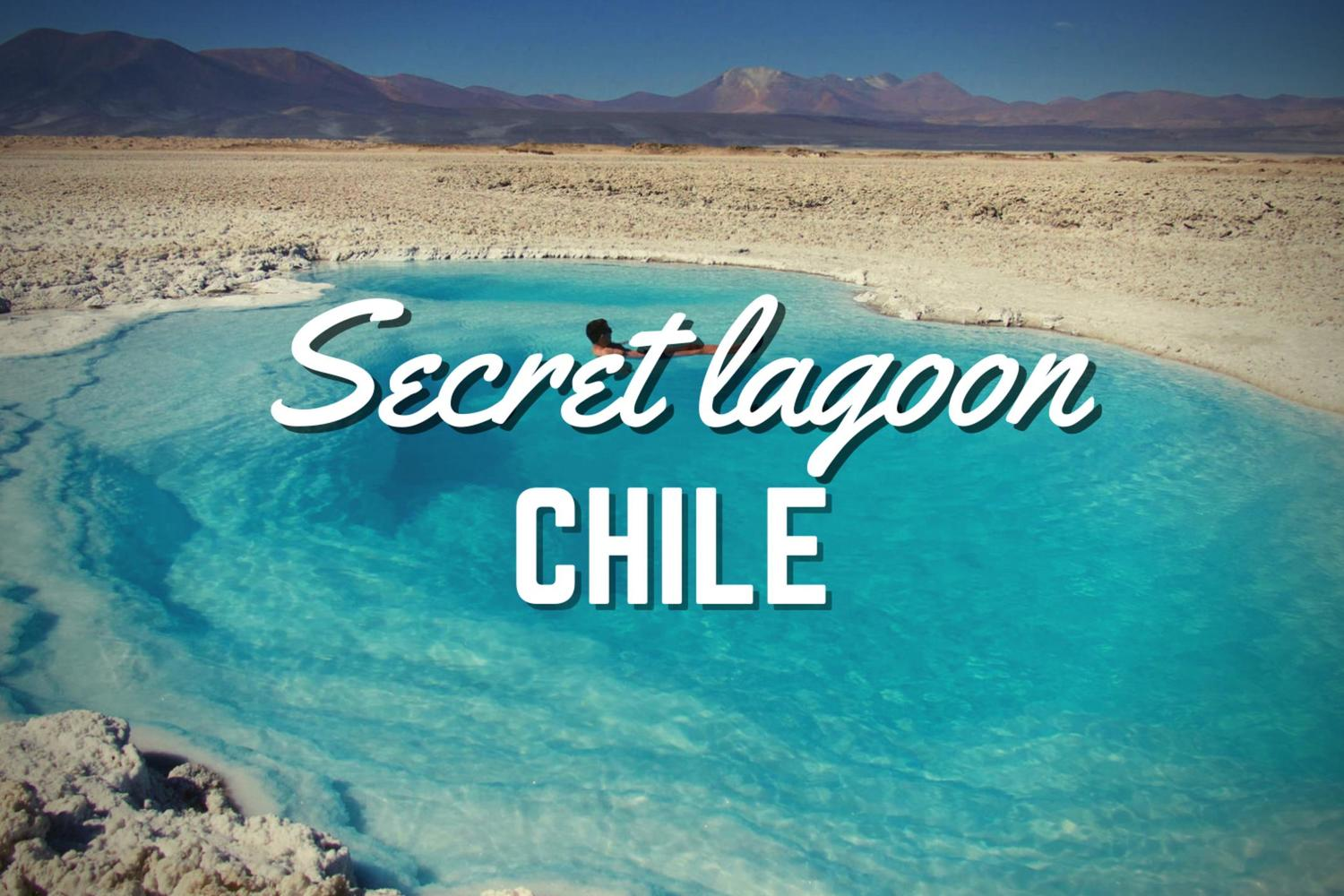 floating in the high lagoons of the Atacama