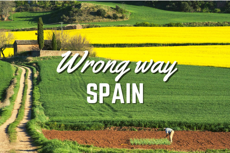 the colourful fields of La Rioja