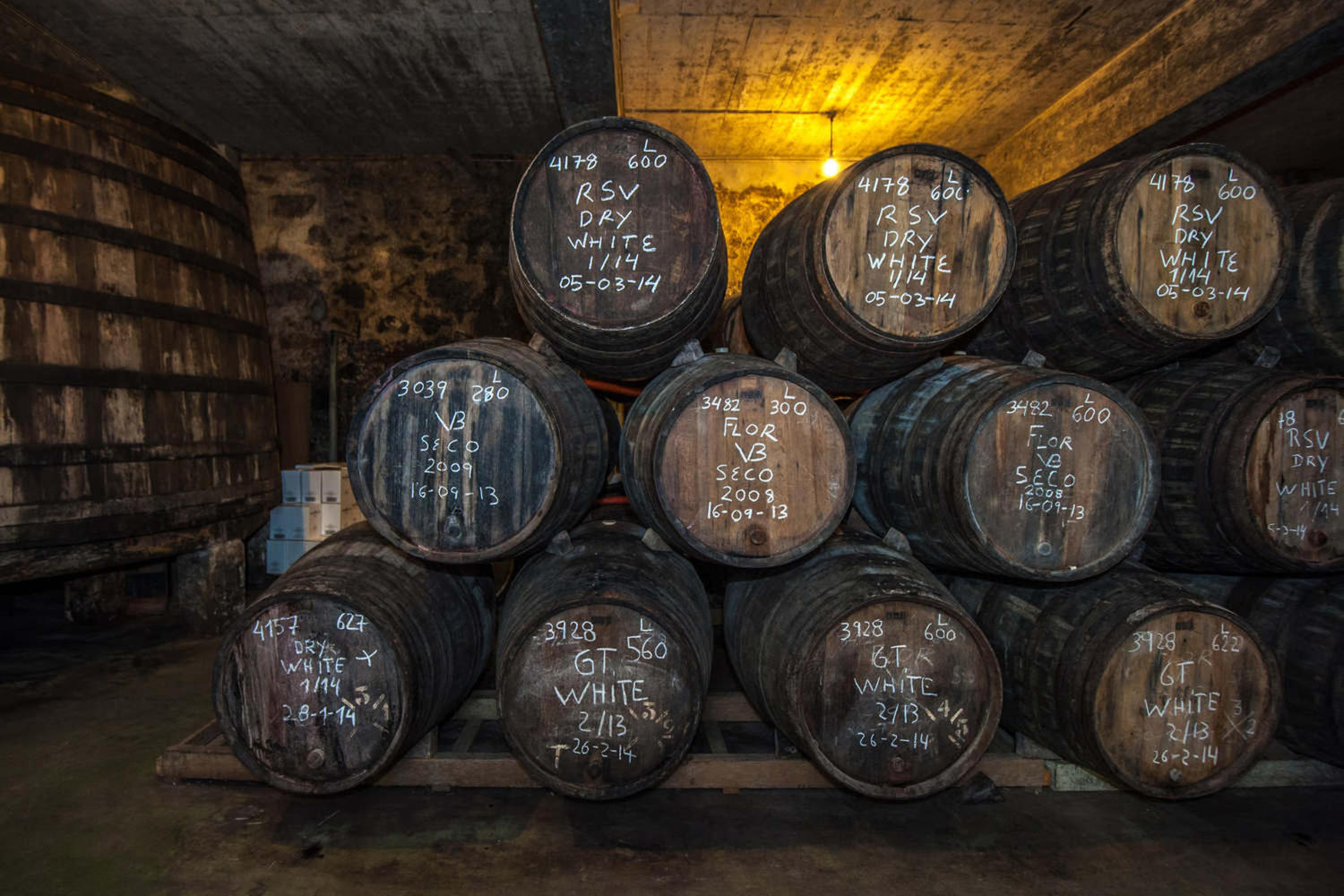 Sherry barrels in a Jerez bodega
