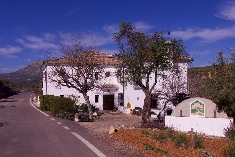 Casa Olea in Andalucia
