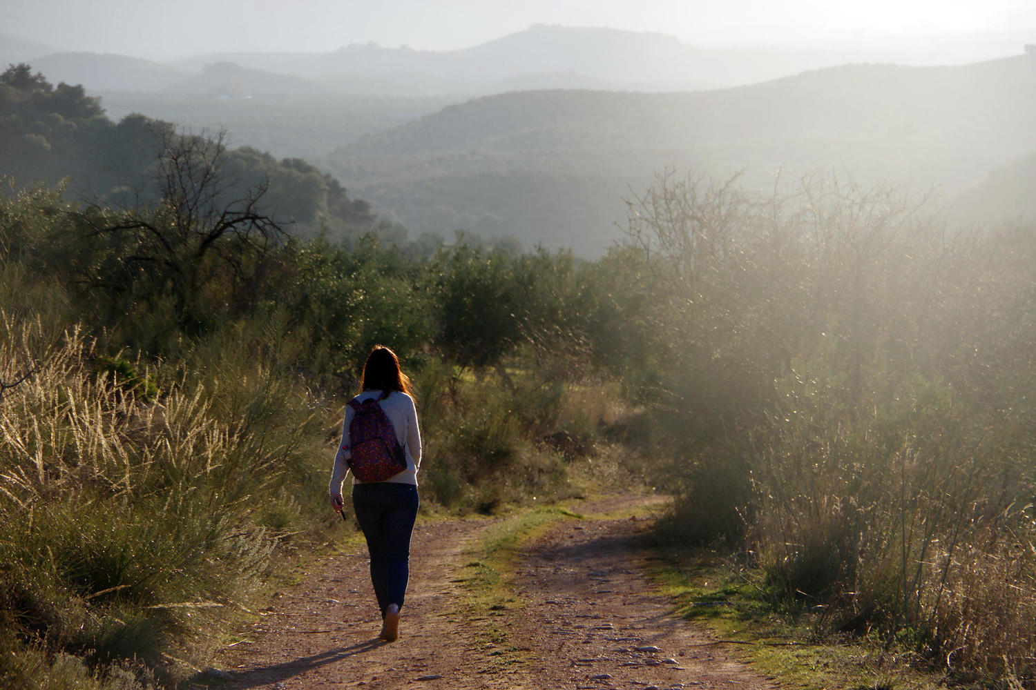 Shadowy outline of distant hills overlooking endless olive groves near Priego de Còrdoba