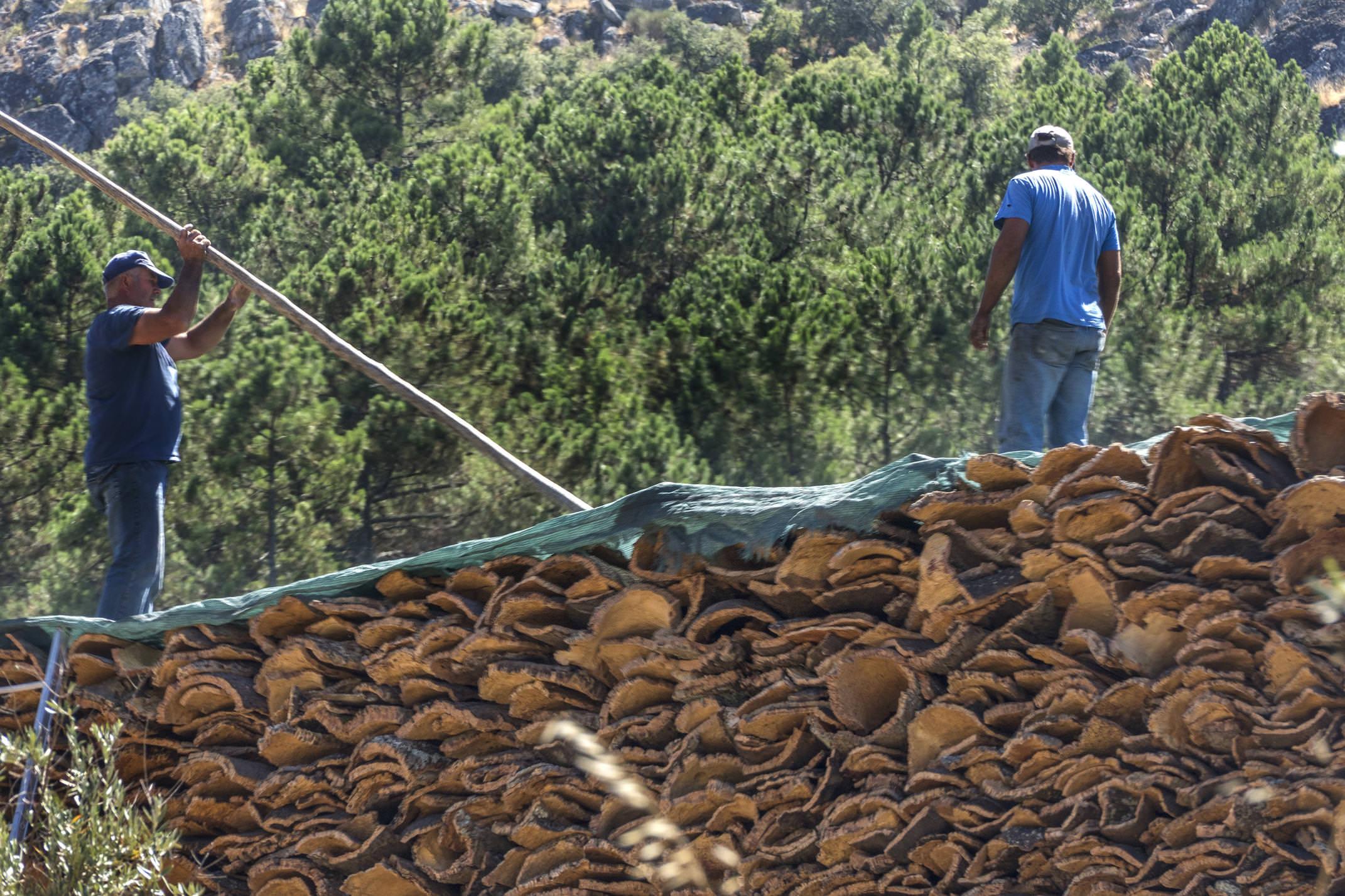 Portugal alentejo castelodavide cork