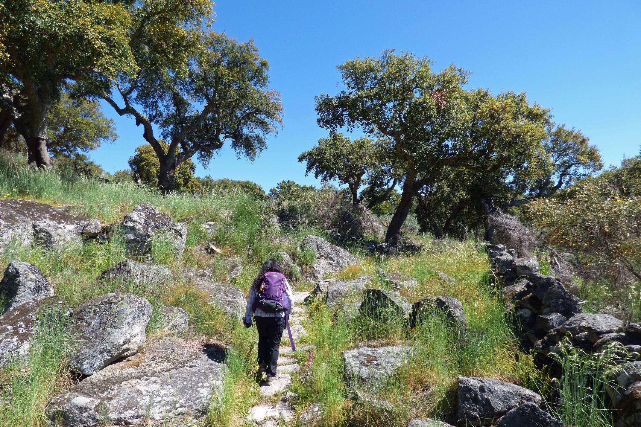Portugal alentejo marvao hiking cork oaks sever riverl c diego pura