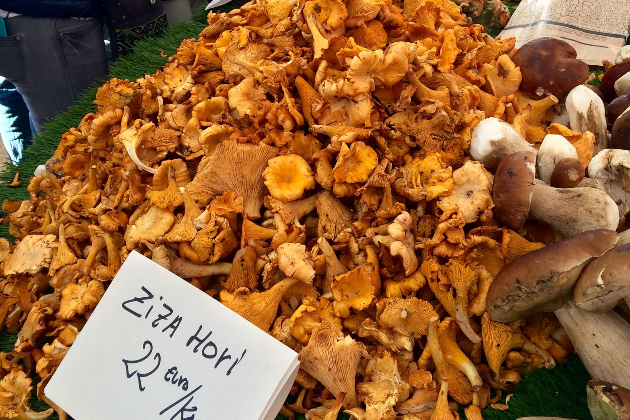 Spain basque country tolosa market mushrooms c xabi etxarri