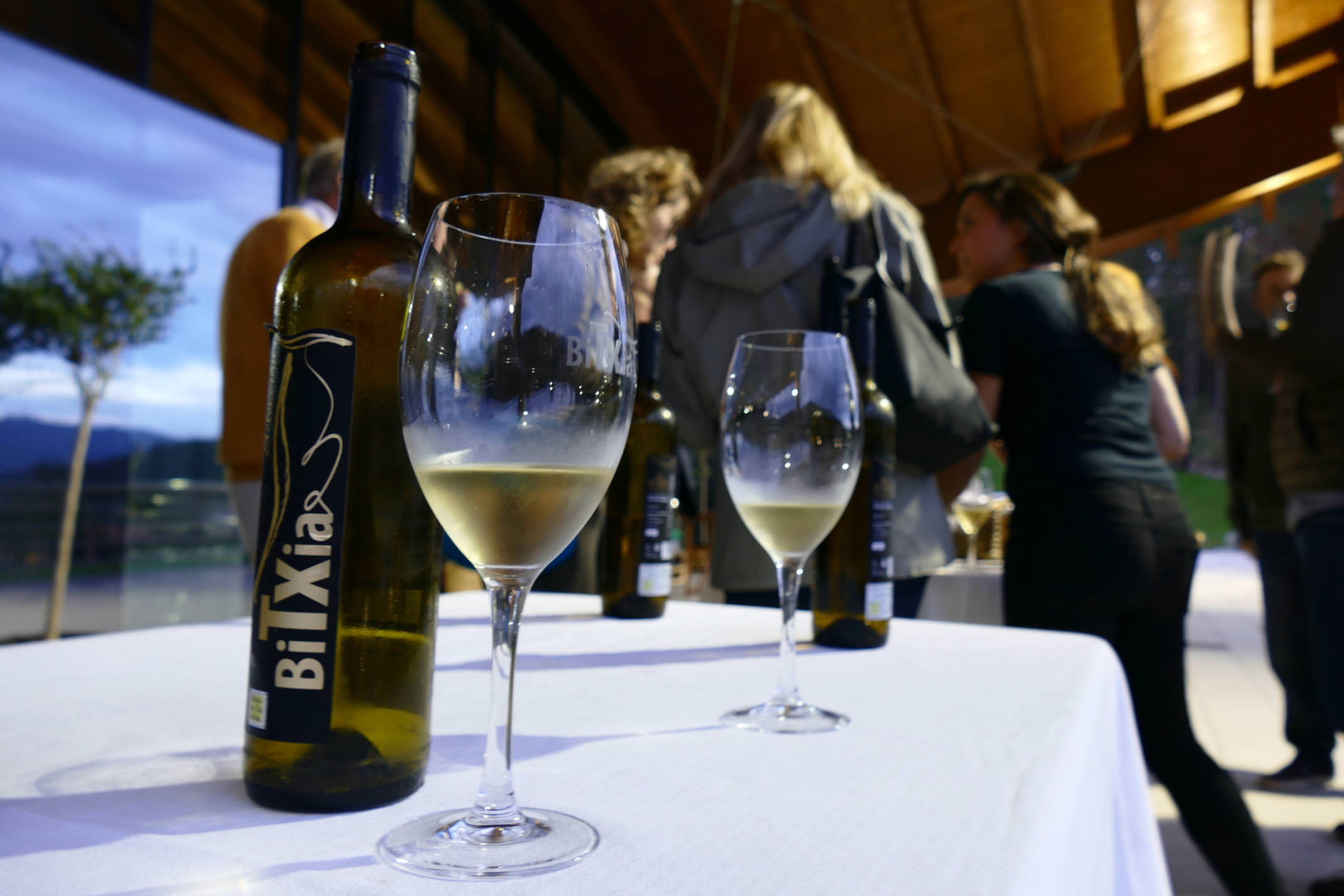 Spain basque country txacoli tasting bitxia bottle close up