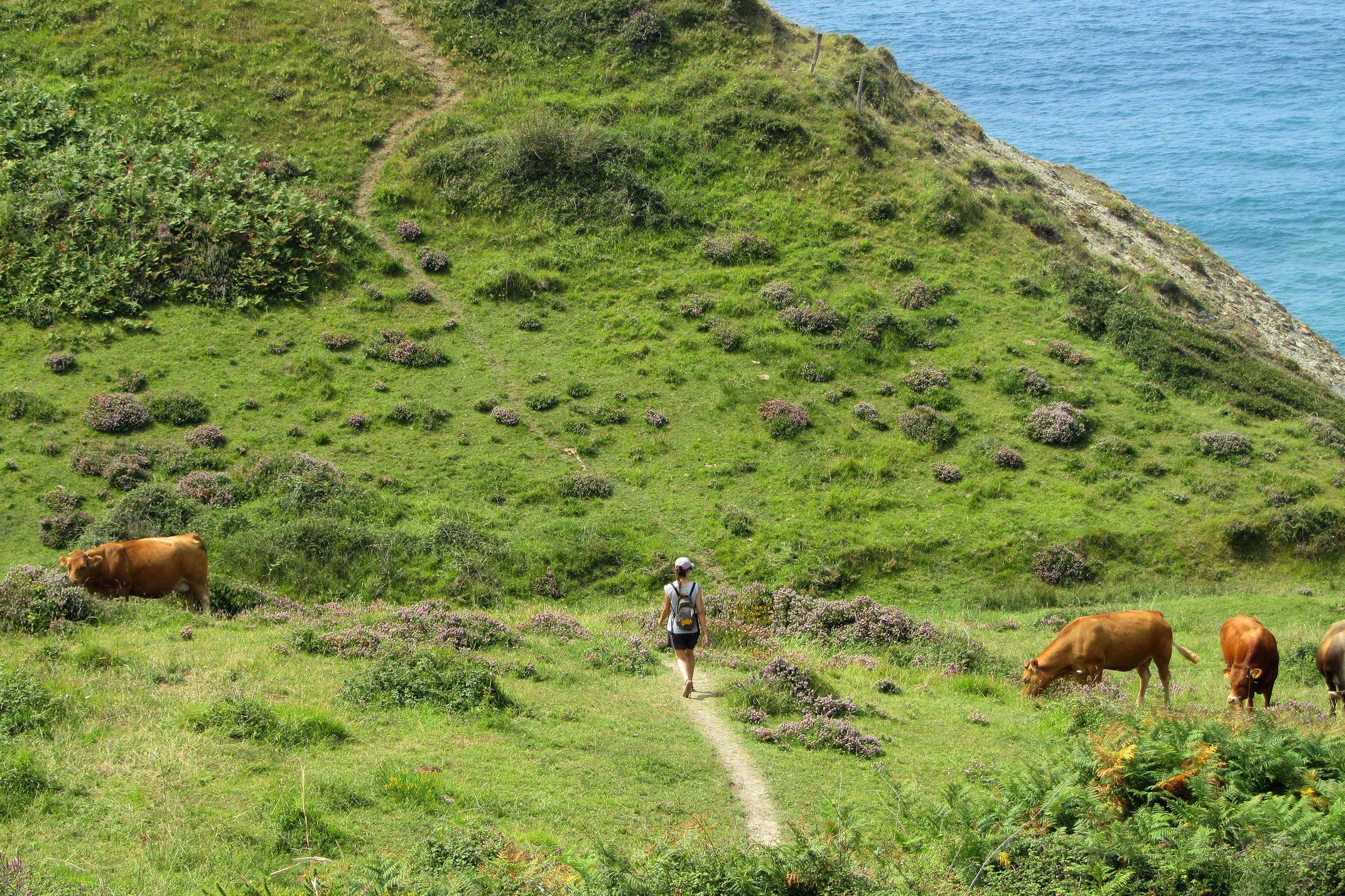 Spain basque inn to inn camino del norte zumaia cliffs hiker