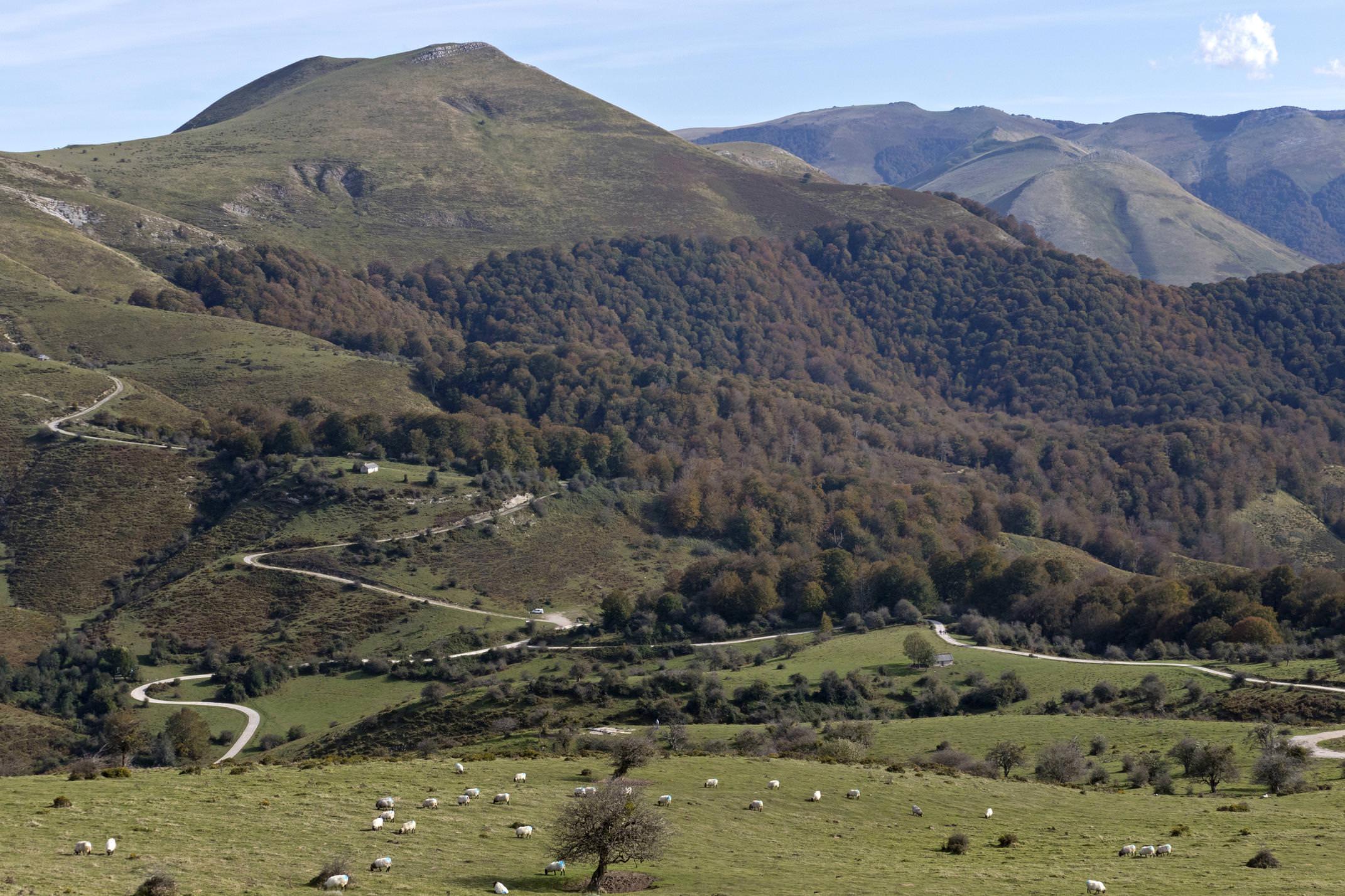 Spain navarre basque pyrenees irati san esteban circuit panorama sheep c diego