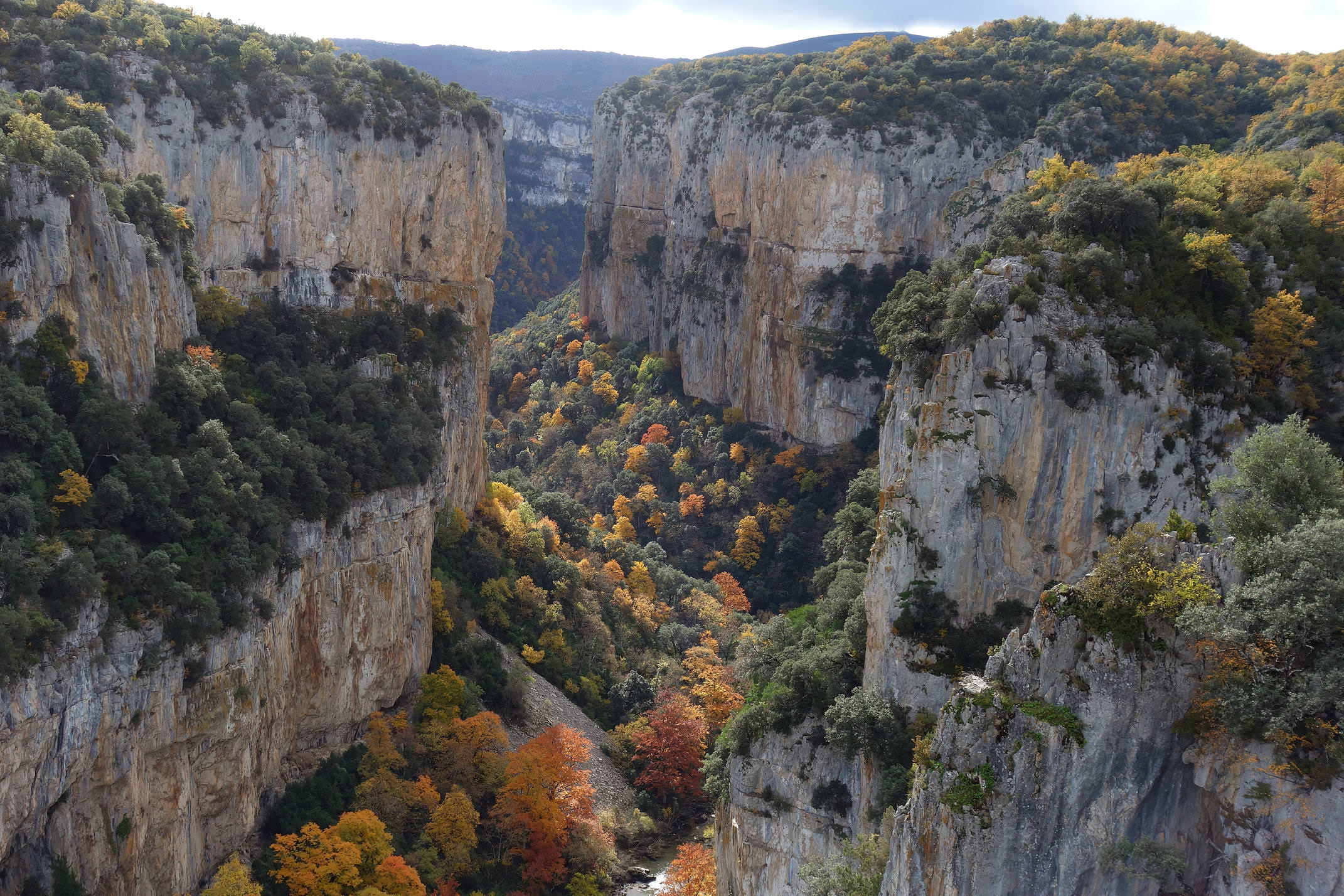 Spain navarre pyrenees foz de arbayun autumn leaves