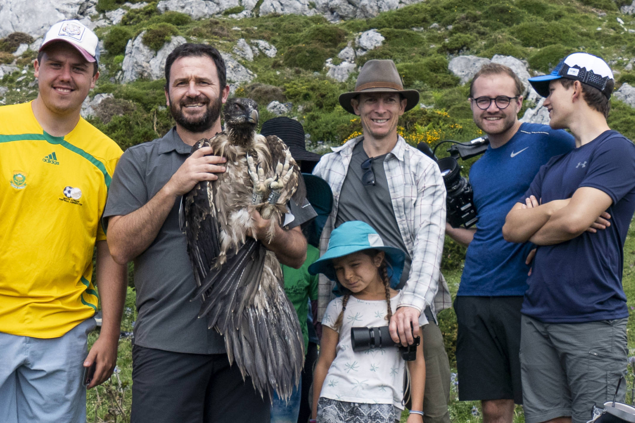 Spain picos pyrenees bearded vulture conservation diego group c diego