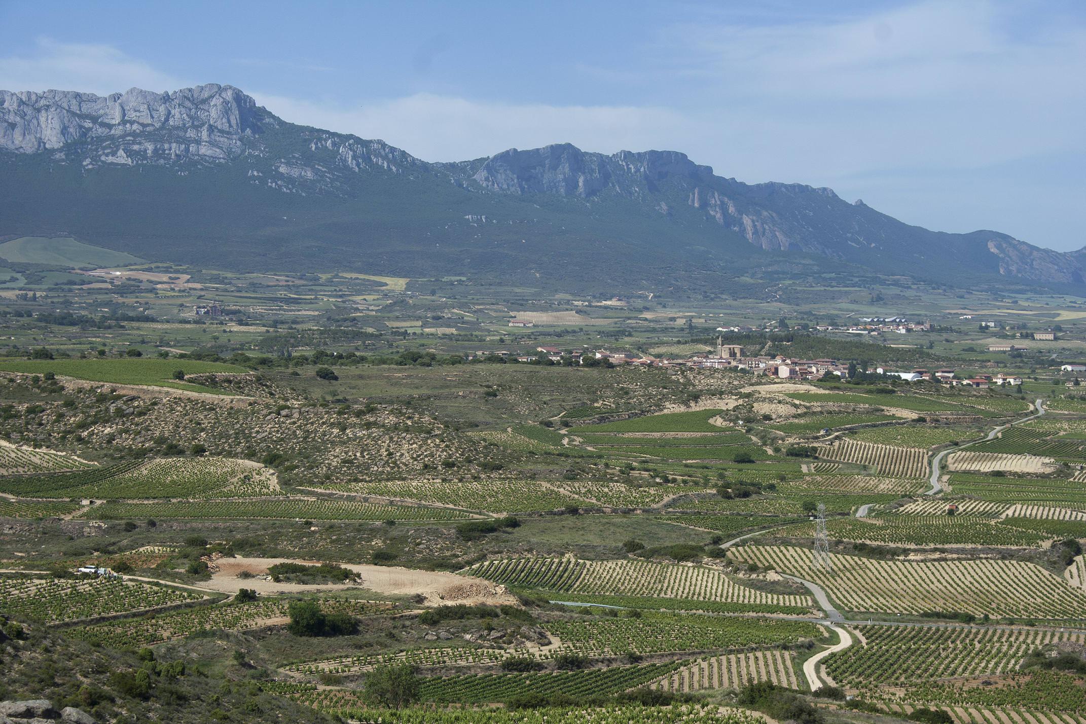 Spain rioja alta c dmartin