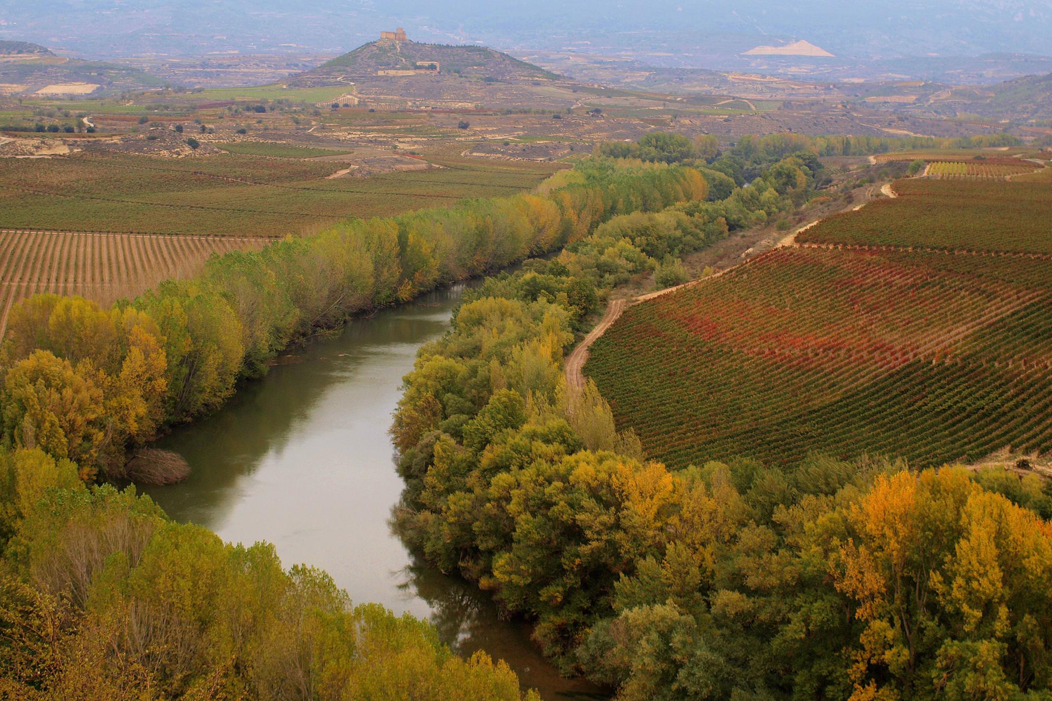 Spain rioja davalillo autumn c nanisub2